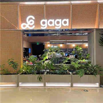 gaga(国贸店)